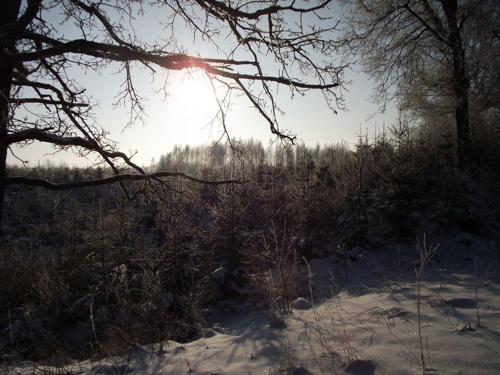 Zima 2012-12-22