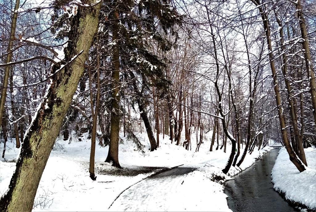 Zima w kalendarzu i w realu
